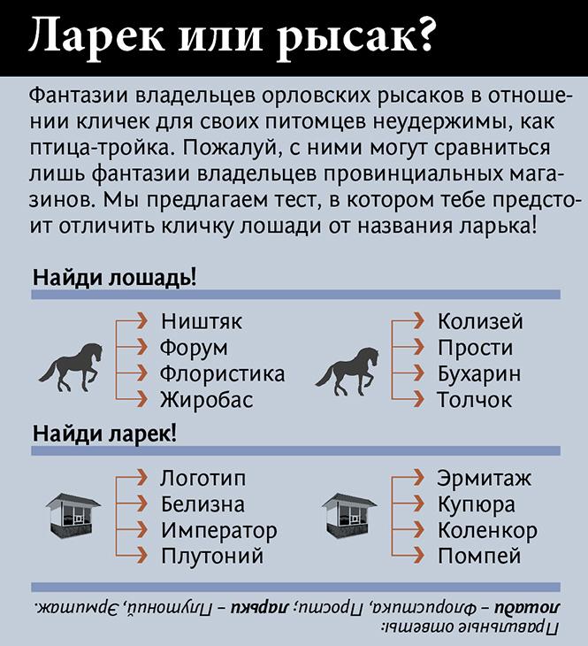 Фото №5 - Неожиданно захватывающая история происхождения лошадиных пород