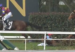 Жокей упал вместе с лошадью, но все равно выиграл скачку! Неукротимое ВИДЕО