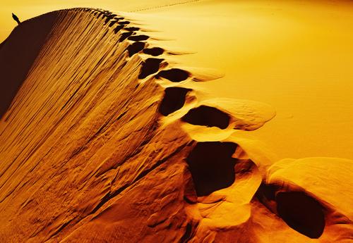 Фото №1 - Операция «Оскар в пустыне»