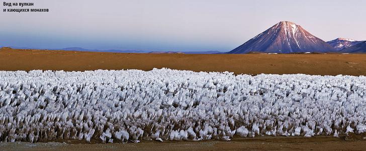 Фото №2 - Ледяные шипы пустыни Атакама, Чили