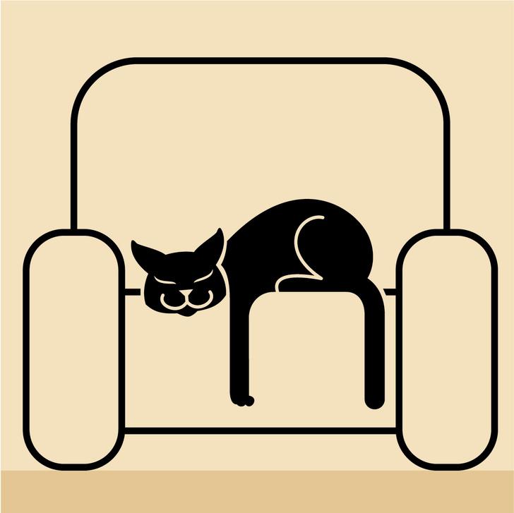 Фото №2 - Как понять язык кота: Краткий человеко-кошачий словарь