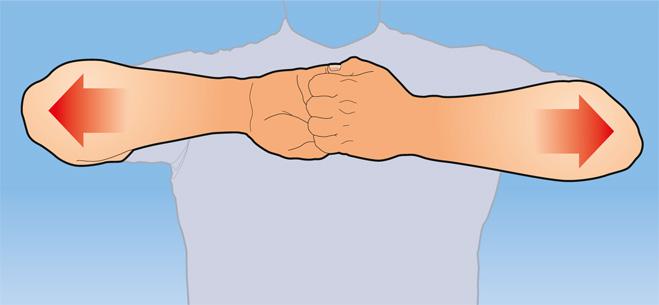 Фото №4 - Как натренировать руки, прилагая минимум усилий