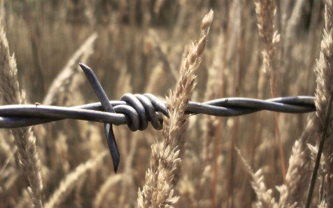 Фото №3 - 9 самых бесчеловечных видов современного оружия