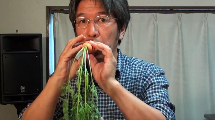 Фото №1 - Японец делает музыкальные инструменты из овощей (ВИДЕО)