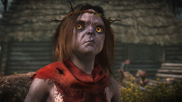 Фото №19 - 20 фактов о грядущей игре The Witcher 3: Wild Hunt