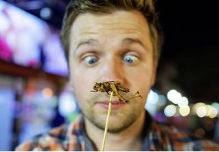 Бабочки — в животе: ученые экспериментируют с диетой на основе насекомых