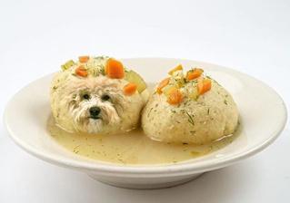 Собаки в еде — лучший «Инстаграм» сезона!