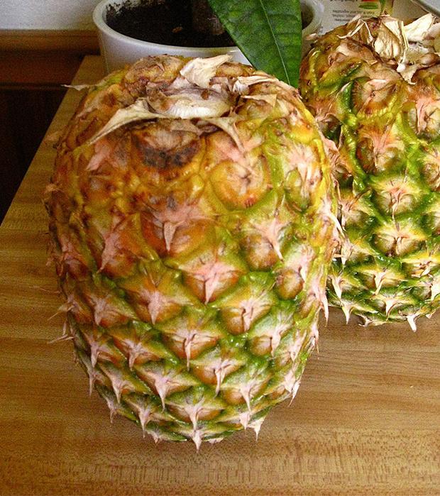 Храни ананасы вверх ногами