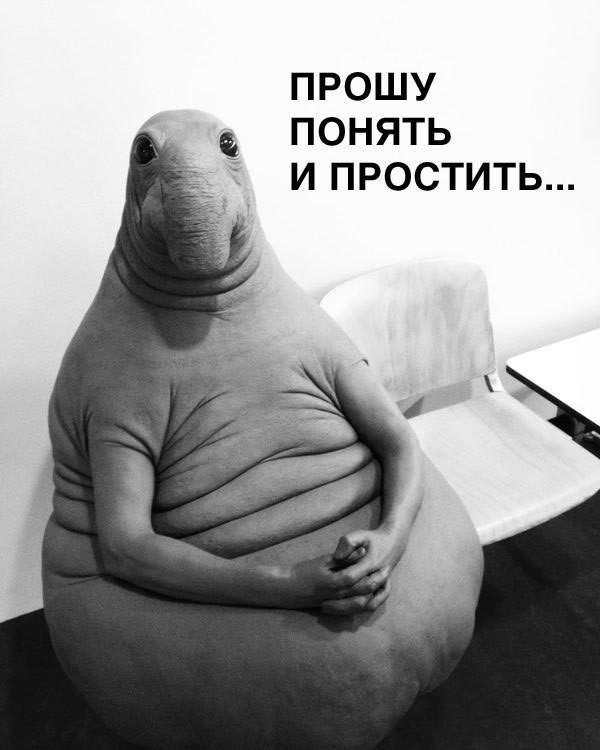 Фото №10 - Самые смешные фотожабы со Ждуном. Часть 3