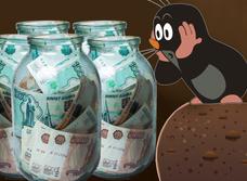 Пенсионерка закопала 1 200 000 рублей сбережений в трехлитровых банках