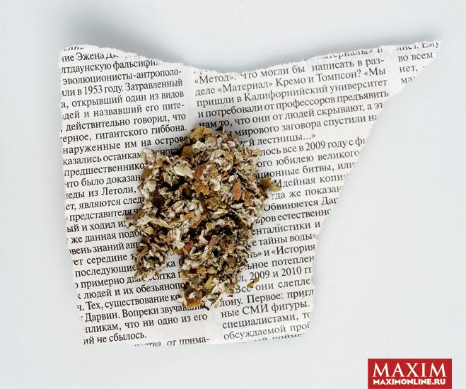 Фото №2 - Что курить в ресторане, раз табак запретили