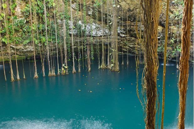 Фото №2 - Идеи для отпуска: Ик-Киль, Мексика