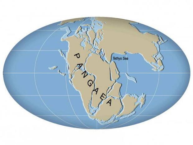 Фото №2 - Как будет выглядеть Земля, если материки опять сойдутся в один суперконтинент