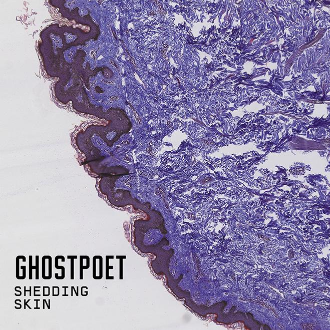 Ghostpoet, Shedding Skin