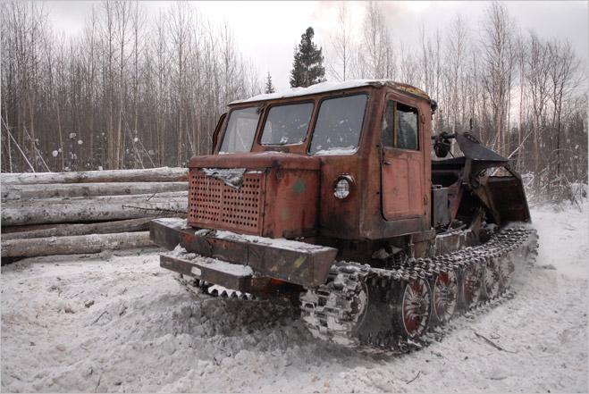 Фото №15 - Сибирская резня бензопилой