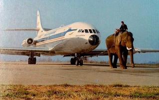 Пассажир, летевший на самолете в первый раз, перепутал дверь туалета с выходом