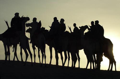 Фото №3 - Операция «Оскар в пустыне»