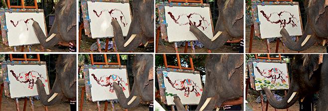 Фото №13 - Слонопотамия. 13 фотоисторий из жизни слонов