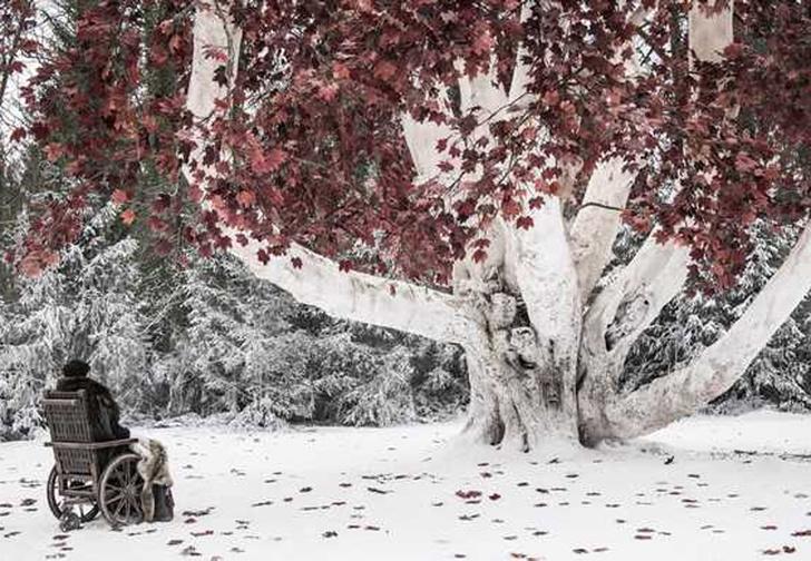 Фото №1 - Канал HBO выложил 14 фото ко второй серии финального сезона «Игры престолов»