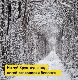 Фото №2 - Место месяца: Клевань, Украина