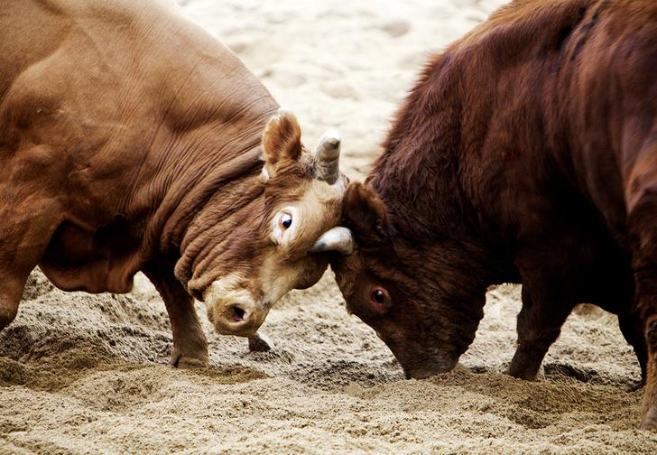 Фото №1 - Пусть сильнее грянет буллинг! Почему мужчинам так нравится издеваться друг над другом
