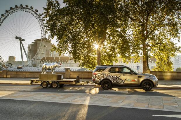 Фото №1 - Land Rover поддержал редкий вид носорогов