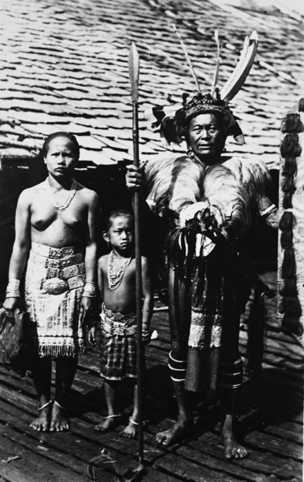 Фото №4 - Фоторепортаж с Борнео — острова, где гостиные украшают черепами врагов