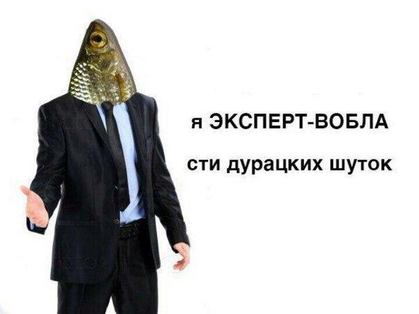 Фото №1 - Самые смешные картинки недели и краденый телевизор