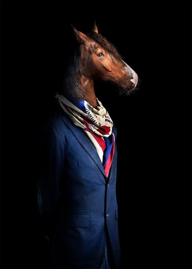 Фото №1 - Так вот как выглядит конь в пальто!