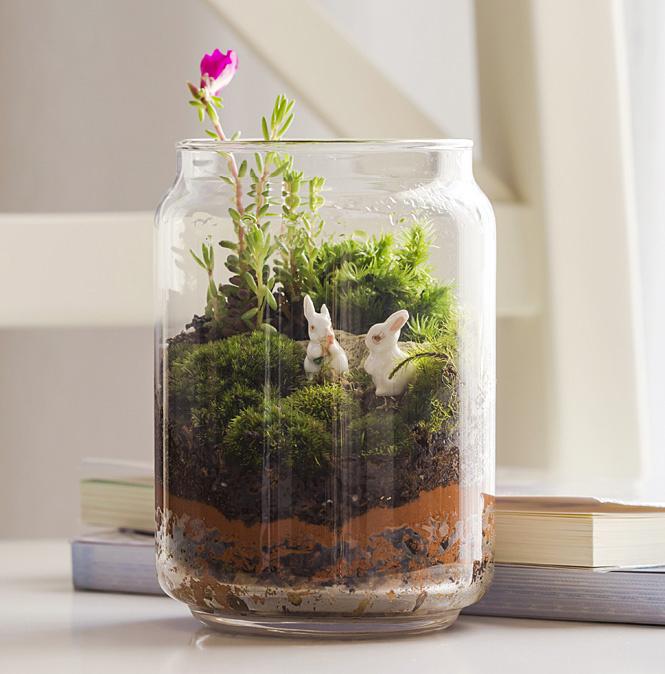 Защити цветы