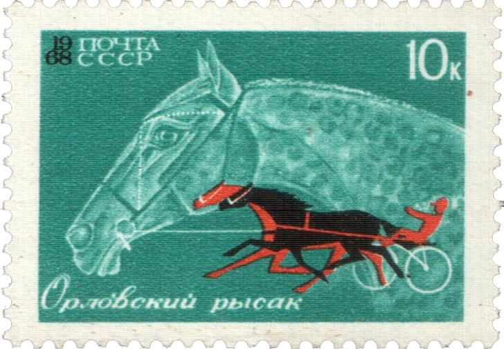 Фото №4 - Неожиданно захватывающая история происхождения лошадиных пород