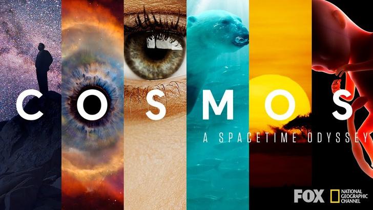Фото №2 - Трейлер нового сезона сериала «Космос» с Нилом Деграссом Тайсоном!