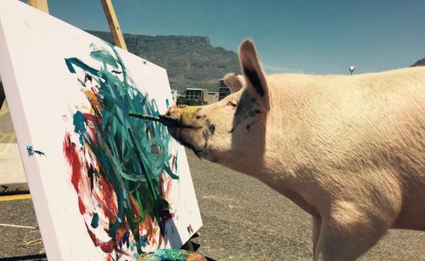 Фото №3 - Познакомься со свиньей-художником, чьи картины продаются по 2 тысячи долларов за штуку!