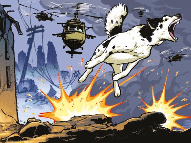 Ожесточенная перестрелка в Грозном вызвана собакой