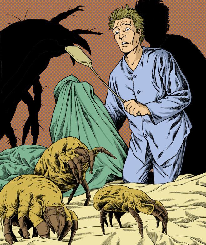 В застеленной кровати размножаются постельные клещи
