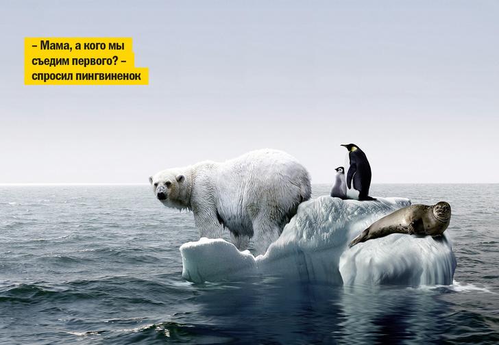 Фото №1 - Ура! Мы не виноваты в глобальном потеплении! Продолжаем свинячить!