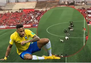 «Неймар-челлендж» — новая, особенно смешная забава в честь бразильского нападающего! ВИДЕО
