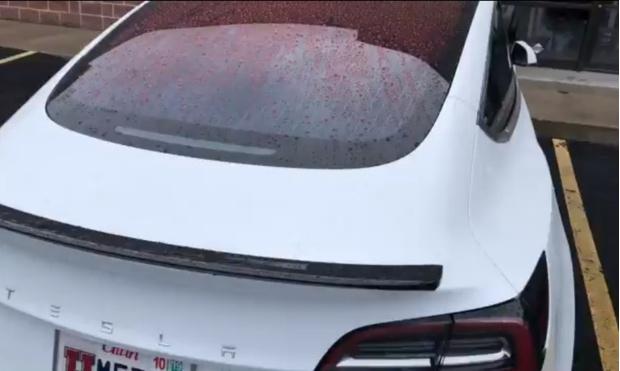 Фото №1 - В Сети высмеяли неожиданный и досадный изъян Tesla (видео)