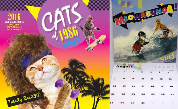 Фото №6 - 9 самых безумных календарей на 2016-й год!