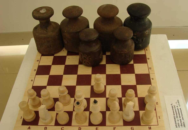 Смешные картинки шашки, виде
