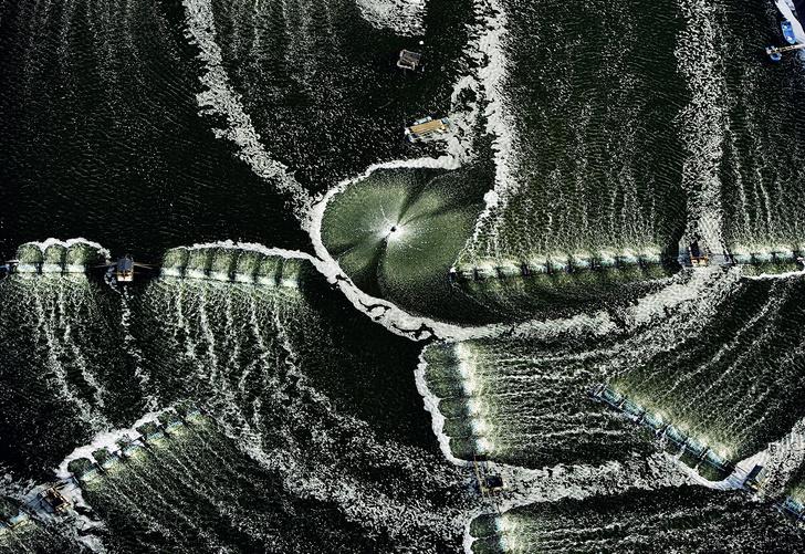 Фото №9 - Они узорят наш район: 9 выразительных фото, сделанных с большой высоты