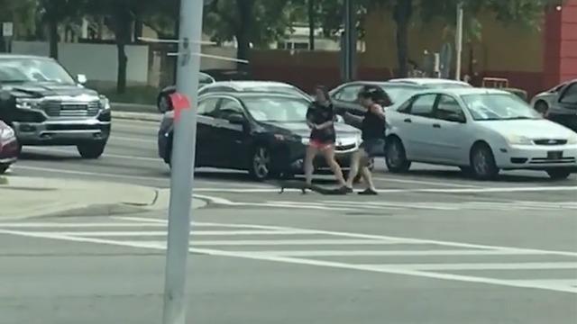 Фото №1 - Доброта дня: две девушки помогают крокодилу перейти дорогу (трогательное ВИДЕО)