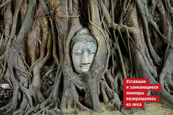Фото №1 - Идея для отпуска: Аюттхая, Таиланд