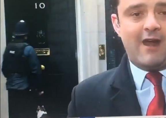 Фото №1 - Видео, умилившее Интернет: полицейский стучится в резиденцию британского премьера, чтобы впустить кота