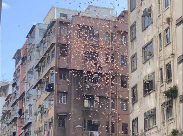 Фото №1 - В Гонконге арестован биткоин-миллионер, который разбрасывал деньги с крыши