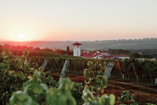 Фото №1 - Единственный в своем роде – после 10 лет подготовки проект «Долина Лефкадия» запускает продажу вилл на виноградниках