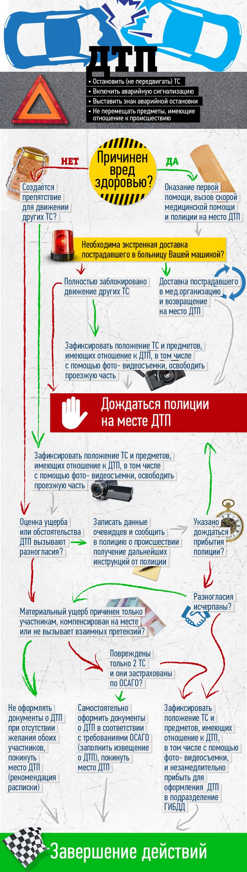 Инфографика: Что делать в случае аварии