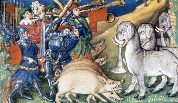 Фото №1 - Свиньи против слонов и еще четыре самые странные битвы в истории войн