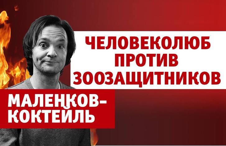 Фото №1 - Александр Маленков против зоозащитников (4-й выпуск нашего шоу «Маленков-коктейль»)