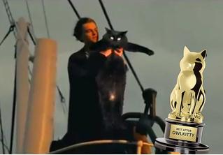 Монтажер вставляет свою кошку в самые популярные фильмы, и получается очень смешно (видео)